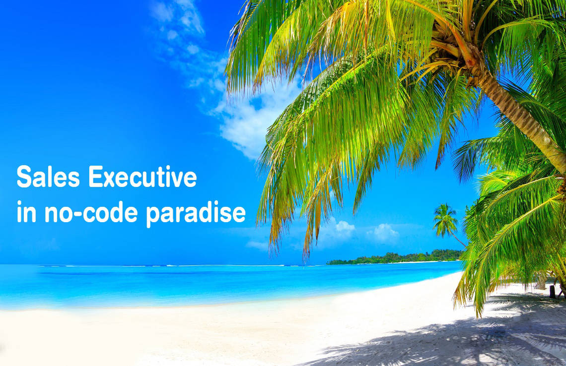 sales executive in no-code paradise